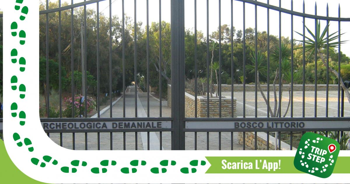 Area archeologica demaniale Bosco Littorio ingresso