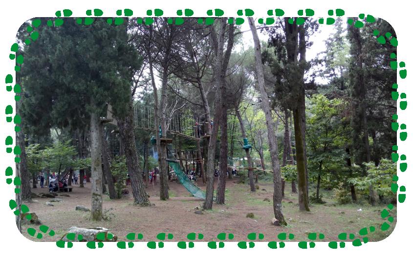 Nebrodi Adventure Park