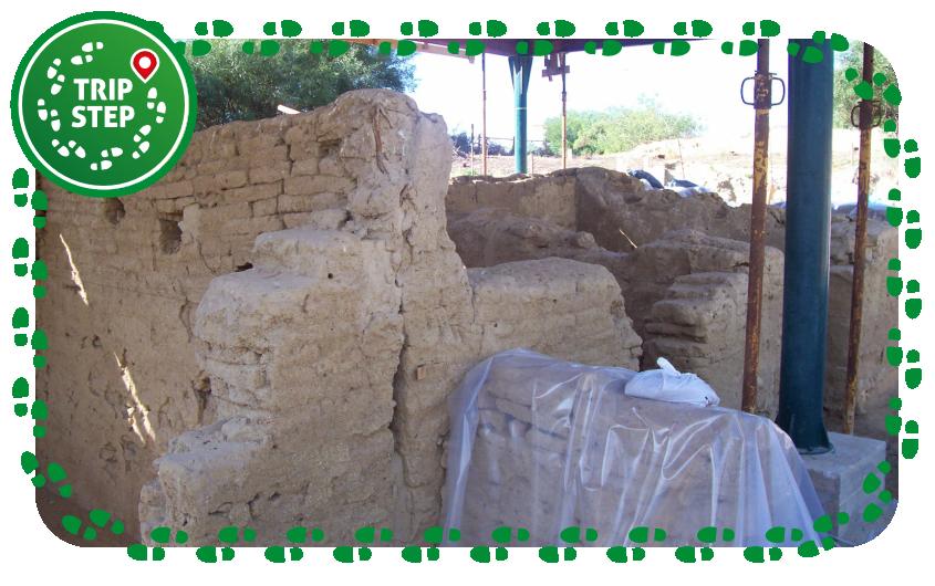 Area archeologica demaniale Bosco Littorio Scavi dell'antico emporio foto di Io'_81 via Wikimedia Commons