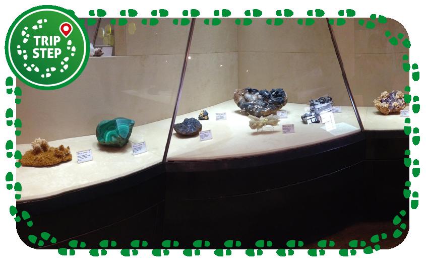 Caltanissetta museo mineralogico vetrina di minerali foto di: OppidumNissenae via Wikimedia Commons