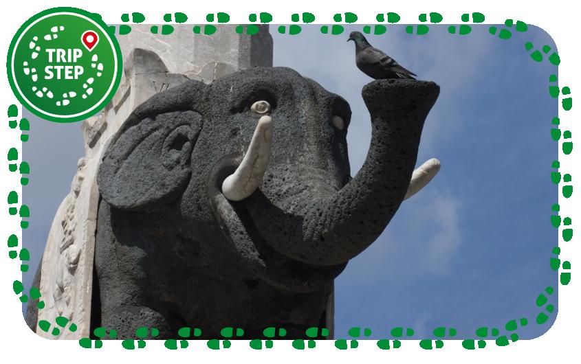 """Catania fontana dell' Elefante """"U Liotru"""" particolare foto di: Dror Feitelson via Wikimedia Commons"""