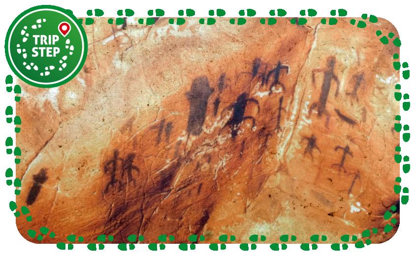 Grotta del Genovese pitture rupestri foto di francesco d via Tripadvisor