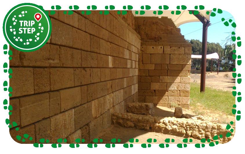 Mura timoleontee foto di Mjrko Gelous via Wikimedia Commons