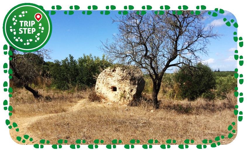 Cave di Cusa rocchi abbandonati
