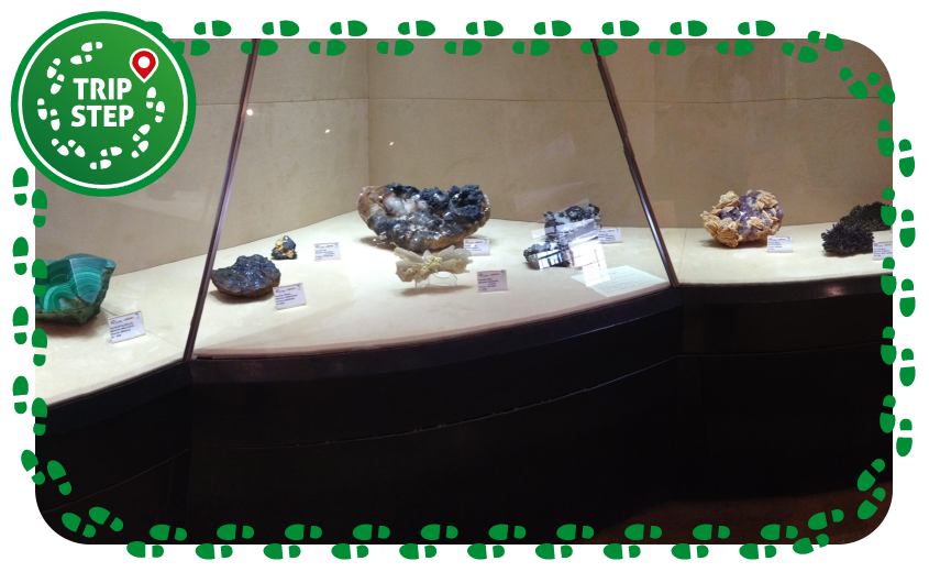 Museo mineralogico di Caltanissetta vetrina di esposizione foto di OppidumNissenae via Wikimedia Commons